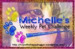 michelles-pet-challenge