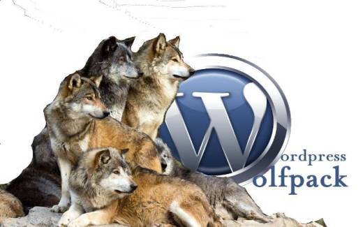 Don't mess with patty says Q or the WordPress Wolf Pack will Get Ya!