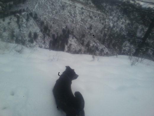 sash lewks upon valley below! frum Q's front yard
