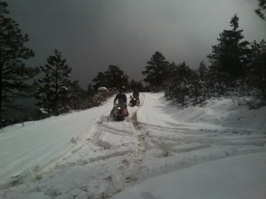 New sledz fer xmas means fun fer da' NEW year!