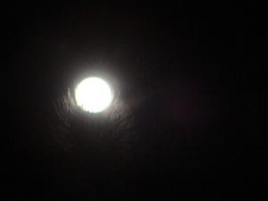 fuzzy full moon last eve