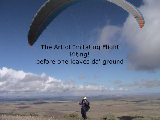 art-of-kiting