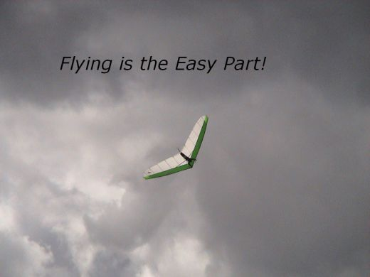 flying-is-easy