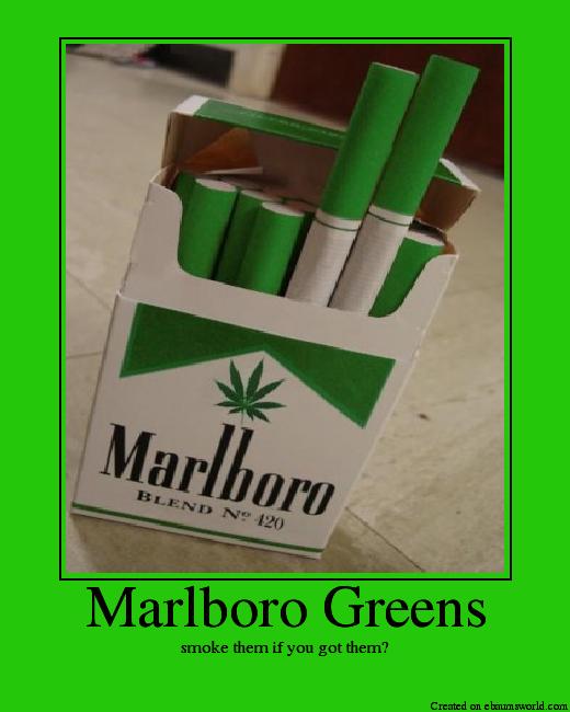 MarlboroGreens